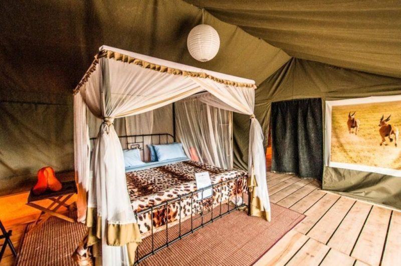 angata-ndutu-camp
