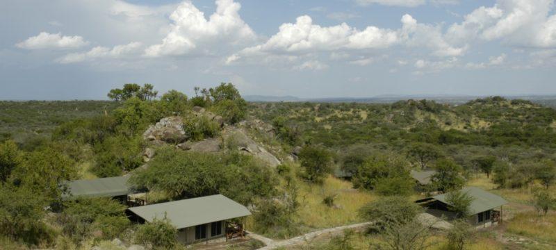 mbuzi-mawe-serengeti