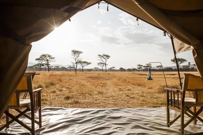 ndutu-kati-kati-serengeti-roomview