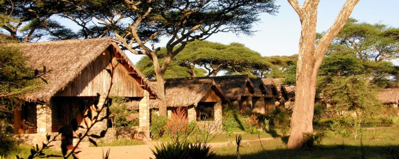 ndutu-safari-lodge