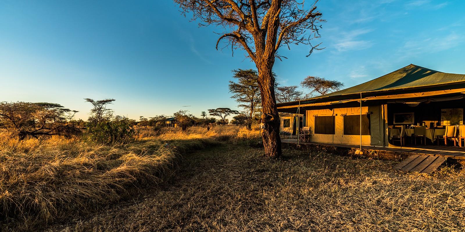 serengeti-angata