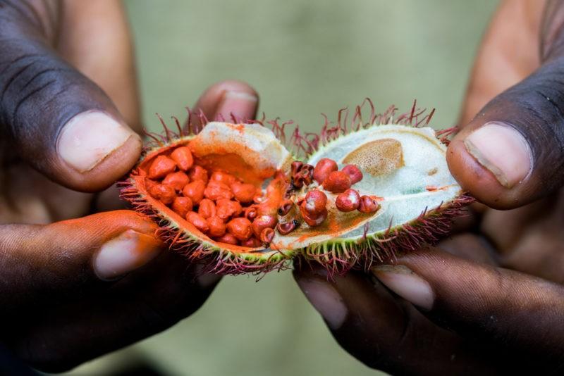 spice-tour-tanzania-zanzibar