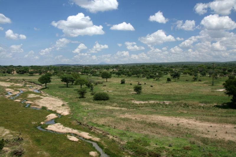 tarangire-safari-wet-season