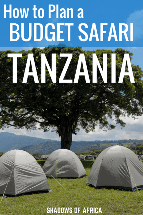 Do you want to plan a budget safari in Tanzania? Here's your guide to how to plan a safari on a budget. From camping safaris to group safaris, here's your ultimate guide to safari's on a budget in Tanzania! #budgetsafari #safari #budgettravel #Tanzania #travel #Africa