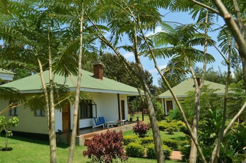country-lodge-karatu-safari