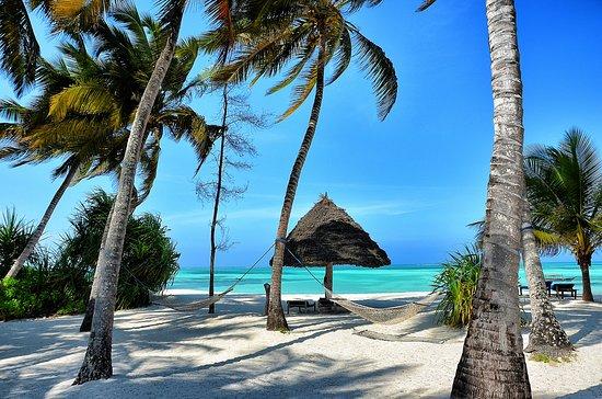 pongwe-beach-hotel