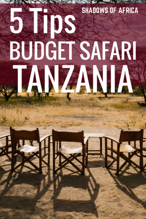 Everything you need to know about planning a budget safari in Tanzania! You don't need to be rich to plan a safari. We cover budget safaris, camping safaris, and how to explore East Africa without breaking the bank. #Tanzania #budgettravel #safari #travel #Africa