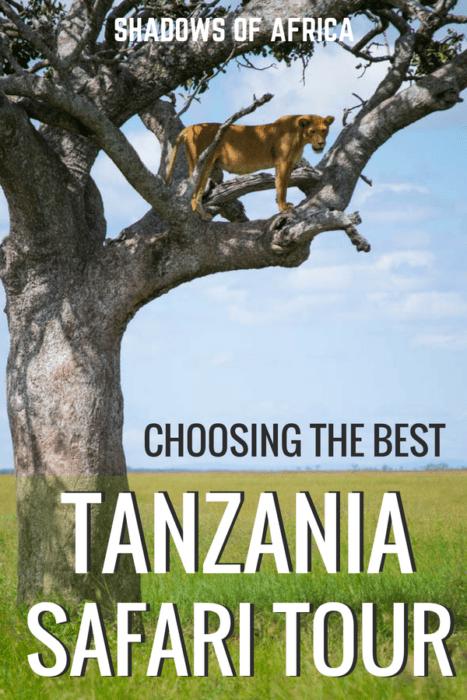 Are you planning a trip to Tanzania? Here's how to choose the perfect Tanzania safari tour for you! From adventure and culture safaris, to picking the right safari itinerary - we've got you covered. #safari #Tanzania #Africa #travel
