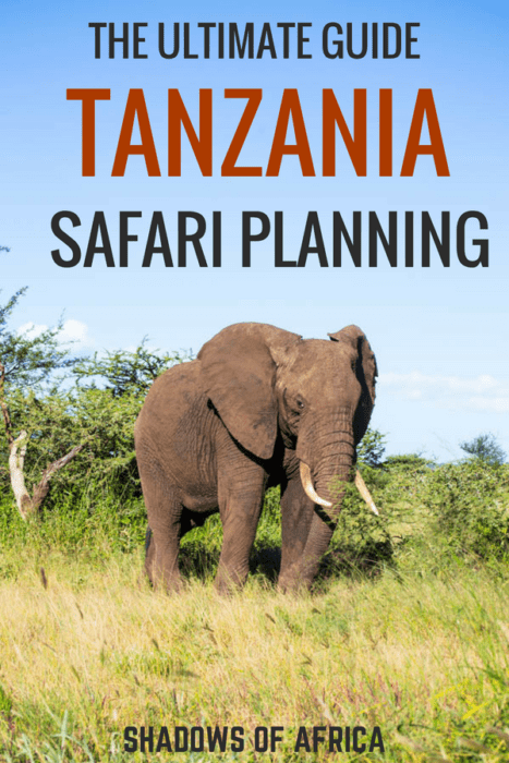 Are you planning a safari in Tanzania? Here's the Ultimate Guide to Tanzania safaris- everything you could want to know about your African safari! #africa #safari #tanzania #travel