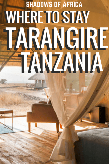 Are you planning a Tanzania safari? Here are the best hotels and lodges in Tarangire National Park! From tented camps to beautiful lodges, these places will make your safari trip even more spectacular! #Tarangire #Tanzania #Africa #safari #travel
