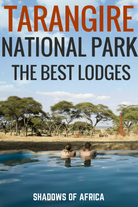 Are you planning a Tanzania safari? Here are the best lodges, hotels, and tented camps for your Tarangire safari! Wondering where to stay in Tarangire? Here's a list of the best places to stay for your safari trip. #Tarangire #Tanzania #safari #hotels #Africa #travel