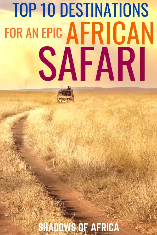 Want to go on an African safari adventure? From Tanzania and Kenya to South Africa, here are the 10 best countries to visit for your African safari trip. Let us help you plan your safari itinerary! #travel #africa #safari #tanzania #kenya #southafrica