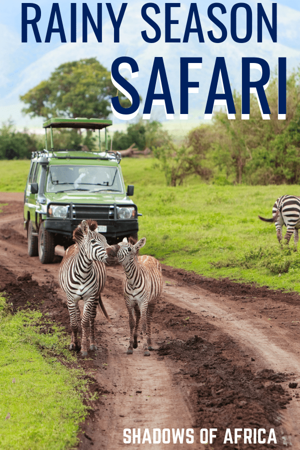Planning on visiting Africa during rainy season for a safari? Here's how to make the most out of your safari trip during the rainy season in April and May. Plan your East African safari any time of year with our rainy season safari guide. #safari #africa #tanzania #kenya #travel