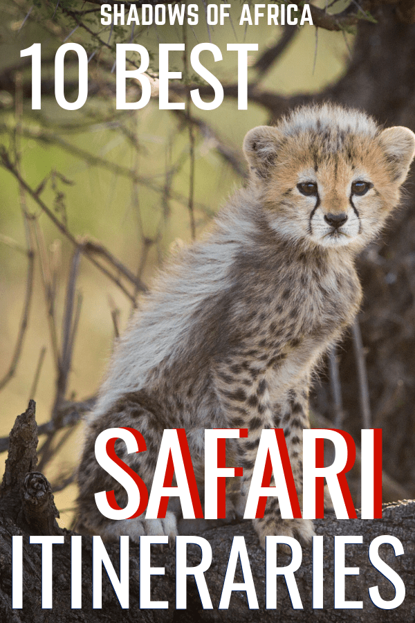 Looking for the perfect Africa safari itinerary? Here are the best safari routes so you can plan your African safari trip! #safari #africa #travel #itinerary #tanzania #kenya
