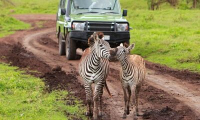 Your guide to visit East Africa this summer